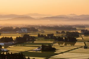素敵な田園風景