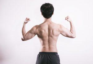 肩甲骨イメージ
